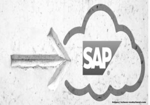 Corporate ERP for Multinational Enterprises: Microsoft Dynamics and SAP Business One