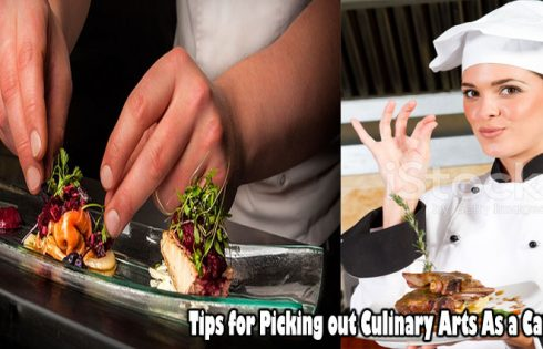 Tips for Picking out Culinary Arts As a Career